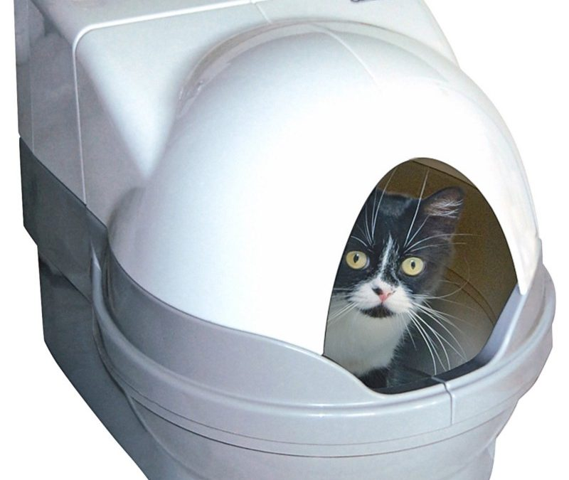 Cat Litter Box with DRM